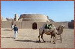 Camel Research Centre