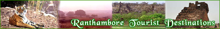 Ranthambore Tourist Destination