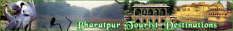 Bharatpur Tourist Destination